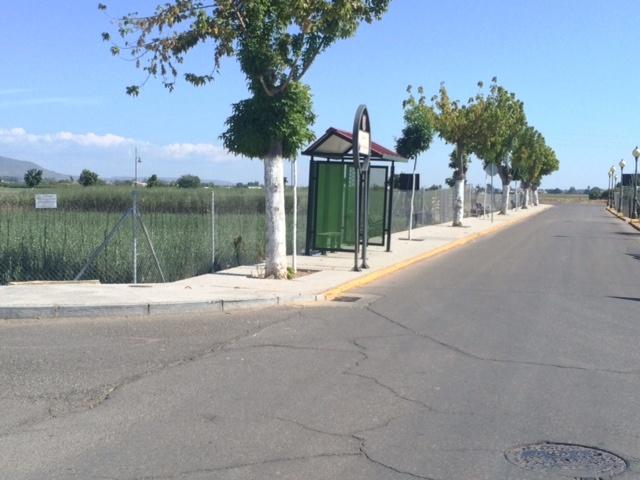Solado del acerado del paseo Pablo Iglesias