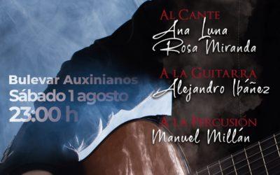Flamenco Fusión en Encinarejo